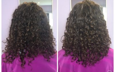 Curly Hair Artistry Mastery Program
